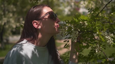 The woman gently touches and sniffs white acacia. Beautiful woman in sunglasses and a beautiful smelling acacia blooming in the park. Stock Footage