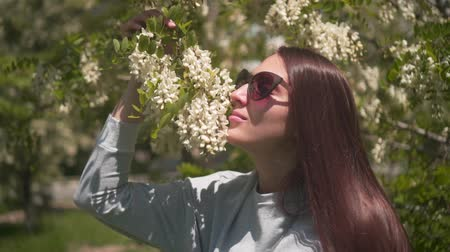 The woman gently touches and sniffs white acacia. Beautiful woman in sunglasses and a beautiful smelling acacia blooming in the park. Stock mozgókép