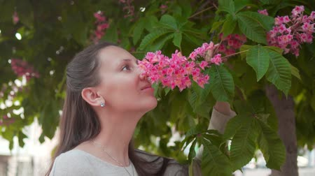 A woman gently touches and sniffs pink chestnut. A beautiful woman and huge pink chestnut blooming in the garden.