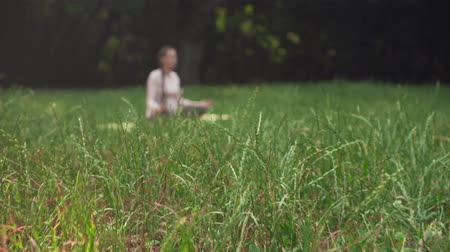 születés előtti : A pregnant woman practices yoga in the park sitting on a rug, sitting in the lotus position and meditates. Relaxing and being in a light lotus.