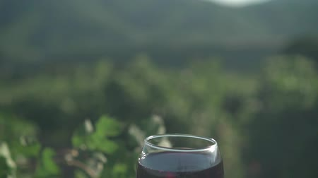 winemaking : A glass of red wine at sunset on the background of the vineyard and mountains. Red wine tasting concept.