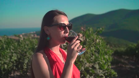 parreira : A young girl in a red dress is standing in a vineyard. A girl with long hair in glasses drinks red wine in a vineyard. Stock Footage