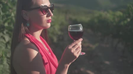 viticultura : A young girl in a red dress is standing in a vineyard. A girl with long hair in glasses drinks red wine in a vineyard. Stock Footage