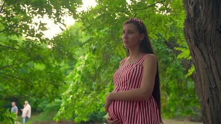 fertilidade : A pregnant girl is standing in the park. A girl with long dark hair in a striped white-red dress stands among the trees and holds her hand on her tummy.