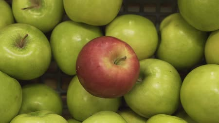 selecionando : Closeup of a fresh ripe red apple among green apples in the supermarket basket of a deli.