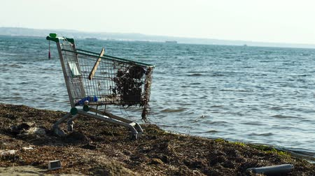 kordé : Middle shot of abandoned metal shopping trolley on the beach standing at the edge of the water in evening light