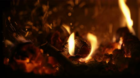 согревание : Close-up of burning firewood in the fireplace with hand adding billets to the fire.