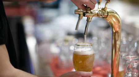 beer tap : Man pouring full glass of draft beer, then turning off the tap and leaving Stock Footage