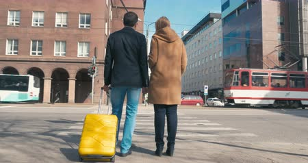 wayside : Two people with trolley bag are standing by pedestrian crossing and waiting for the green traffic light. They are turned backs to the camera. Stock Footage