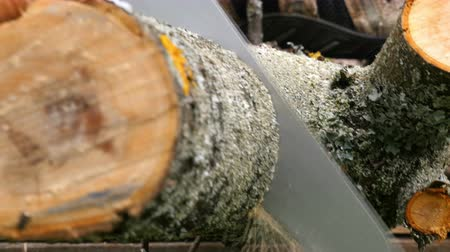 práce ze dřeva : Closeup shot of wooden log being cut with handsaw.