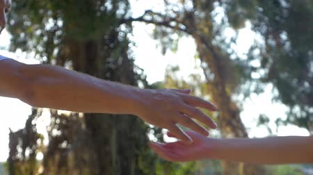 person's hand : Senior man helping a woman by giving a hand during outdoor walk in the forest