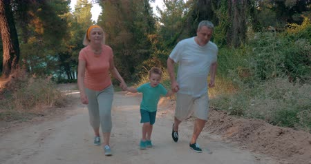jogging : Steadicam shot of grandmother, grandfather and little grandson running by hand up the road in the forest. Evening training together Stock Footage