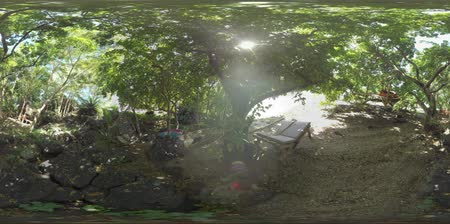 floresta tropical : 360 VR video. Relaxing area with hut and chaise-longues among the trees on river bank. Family having a rest there. Father walking with son and mother lying in hammock with digital tablet. Mauritius