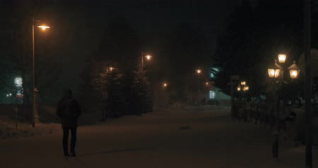 освещенный : Man taking video or making photos in night winter park with fir trees and lanterns, light snow falling. Then he walking along the path