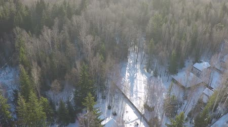 settlement : Aerial shot of snowy countryside houses in the woods. Winter scene of village among bare birches and green fir trees