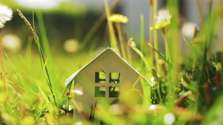 metafoor : Small house model among green grass. Living in the countryside and eco-home concept, real estate