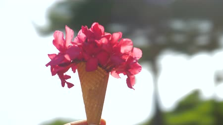 конусы : Point of view close-up shot of spinning around and holding red flower  bouquet  in waffle cone, summer scene