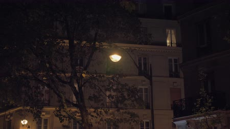 тусклый : Slow motion shot of drizzling at autumn night. View to the houses, tree in the yard and electric lanterns outside