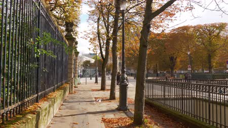 stroll : PARIS, FRANCE - SEPTEMBER 29, 2017: Steadicam shot of walking along sidewalk lined with autumn trees, foliage on the ground Stock Footage