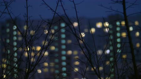 çok katlı : Night view of bare tree branches with defocused apartment block in background. Window lights in the darkness
