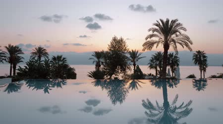 brilhando : Steadicam shot of a shining swimming pool and an evening scenery behind it. There are tall and dark palm trees, faraway mountains and a quiet sea surface Vídeos