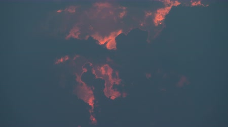 escarlate : Evening skyscape. Clouds with red tint sailing in the sky Stock Footage
