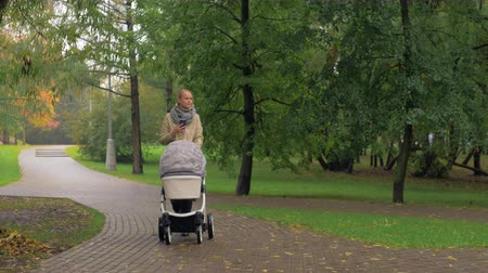 forrado : Mother having an walk with baby in the park on autumn day. She pushing pram and using smart phone Vídeos