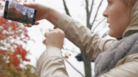 üvez ağacı : Woman making mobile photo of a rowan tree when walking with baby in the park on autumn day Stok Video