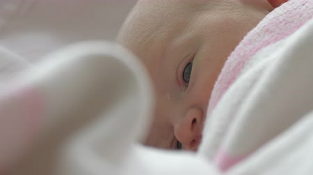 detay : A closeup of a newborn baby girls face who is quietly lying on a side with her eyes opened. She is wrapped in a pink and white blanket Stok Video
