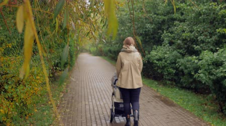 kareta : Back view of a mother with baby carriage outside. Woman with pram walking in the park on rainy autumn day