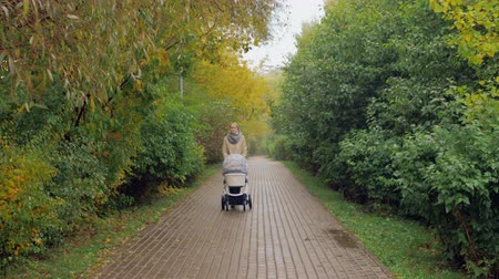 Mother walking with baby in pram along the tree-lined path in autumn park
