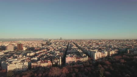 voar : Aerial panorama of morning Madrid in winter, Spain. Park neighboring the vast area built-up with houses and office buildings
