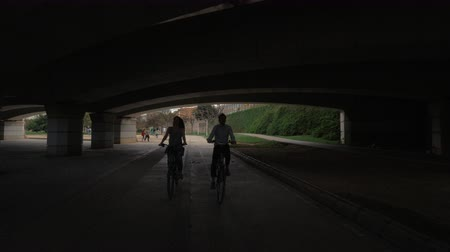 Валенсия : A young couple cycling under a wide bridge in Valencia
