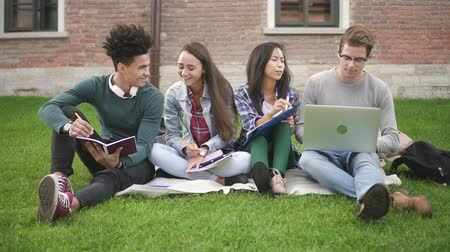 латина : Multiracial group of friends studying together on campus. African. asian and caucasian students sitting on grass and discussing academic project, using laptop. Стоковые видеозаписи