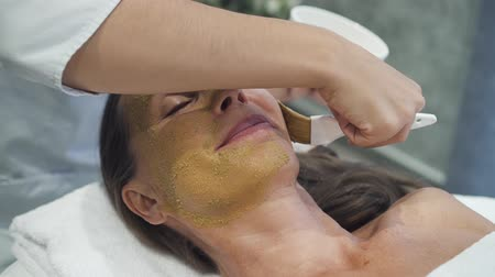 visszavonulás : Modern female cosmetologist is making medic luxury cosmetic procedure for mature woman. Clay mask is very healthy retreat way of skincare treatment and facial wellness. Spa system medication for aged clients.