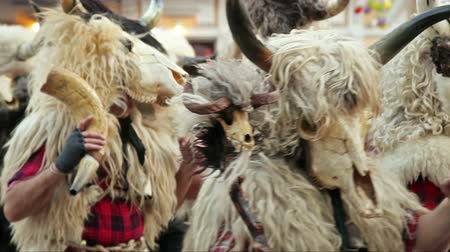 karnaval : Traditional carnival people under animal masks pass through scene, closeup, at Rijeka Carnival, Croatia.
