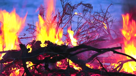 dumping : Burning wood and garbage creates pollution to the environment more than landfill