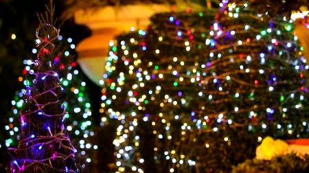 tons : multi color light decoration on tree in night garden blur rainbow bokeh background