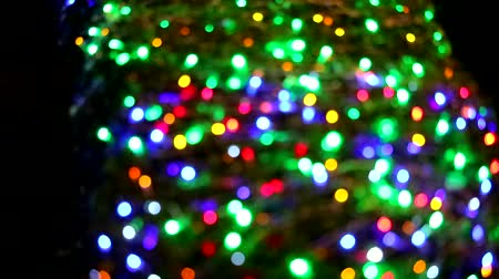 tons : multi color blur light decoration on tree in the night garden