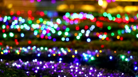 tón : multi color blur rainbow light decoration in the night garden area