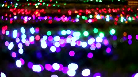 barbante : blur starburst purple red rainbow color light on tree in the night garden