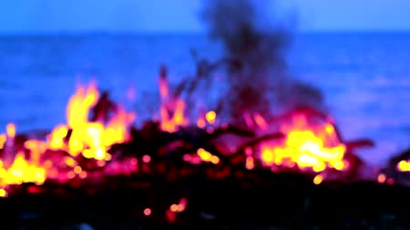 dumping : Burning wood and garbage by the sea creates pollution to marine lifes