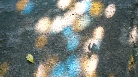 templo : Light reflected on the floor from the stained glass and the shadow of the leaves in the garden Stock Footage