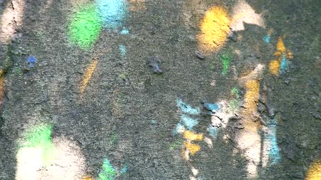 stained glass : Light reflected on the floor from the stained glass and the shadow of the leaves in the garden1