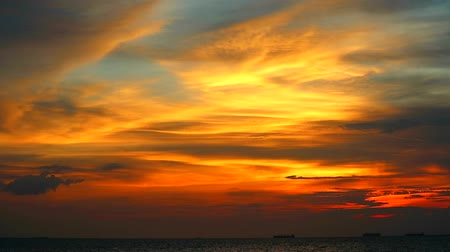 sea bird : colorful sunset back orange and light and red color of cloud on sea and cargo ship was parking