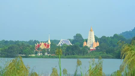 thai kültür : Buddhist temples and pagodas are situated on a lake in the middle of a valley and bird flying Stok Video
