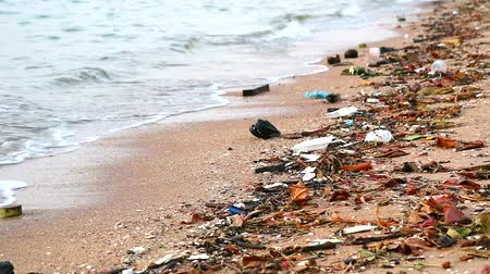 litter box : sunset on sea with plastic rubber and waste are left on beach and waves blew them into the sea
