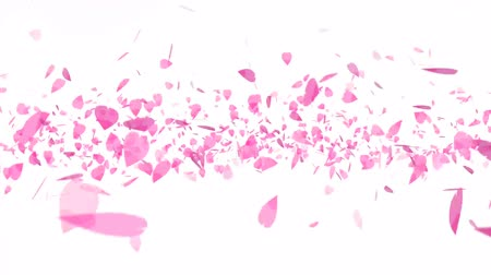 kartka urodzinowa : pink sakura leaves heavy twirly flying isolated background