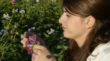 plucks : Young woman plucks petals cosmos Stock Footage