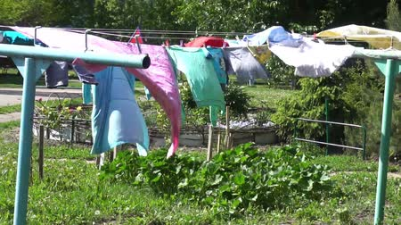 szárítókötél : The clothes hang on the rope and dry. Stock mozgókép